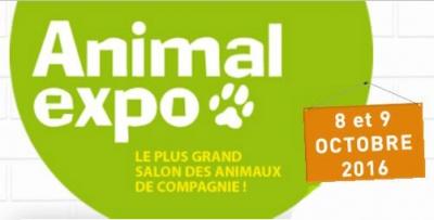 Animal-expo-2016