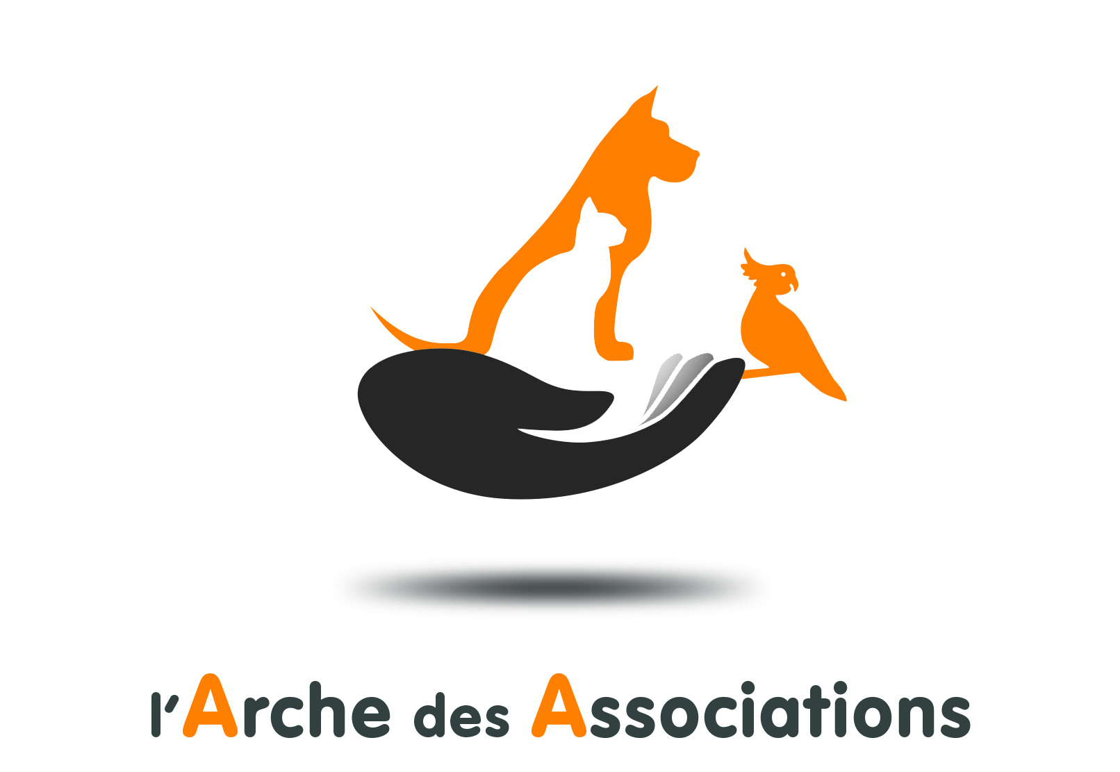 Logo L'Arche Des Associations