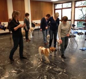 formation des bénévoles et de leurs chiens