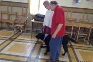 un chien accompagne une personne âgée dans sa promenade