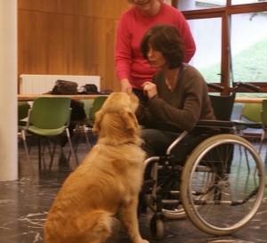 test d'aptitude avec une personne en fauteuil roulant