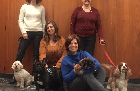 nos ' nouvelles benevoles et leurs chiens bichon bouledogue teckel cavalier king charles